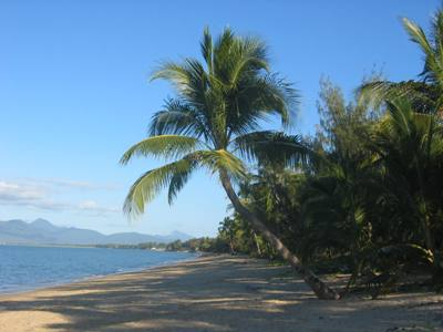 Palm Cove - Queensland.jpg