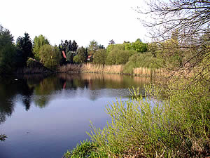 Buschgrabensee - zum Vergrößern klicken