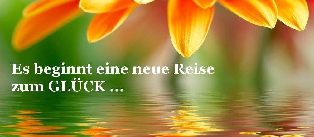 Blume_orang_GROSS_Reise_1007x440.jpg