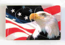 "Plektrum Card ""Eagle USA"""