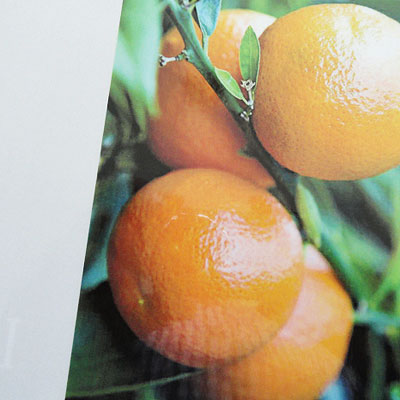 Olori Aromaglas Orange