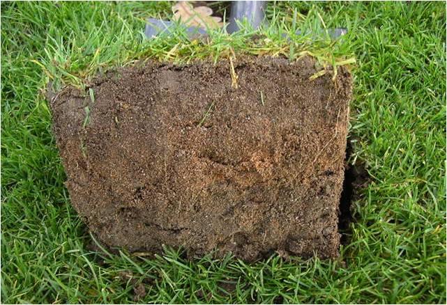 Le r novateur des sols sportifs de l 39 est for Analyse de sol construction