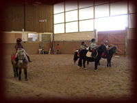Centre équestre, poney club, technique d'apprentissage