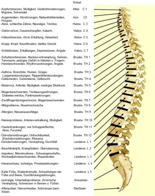 gallensteine symptome durchfall