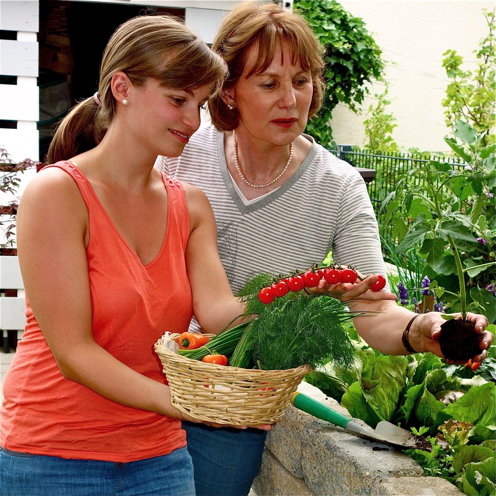 3511 Cleveres Erden-Konzept fürs Hochbeet - Die neue frux Hochbeeterde – Urban Gardening