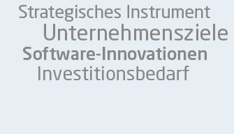 erp-strategie5.jpg