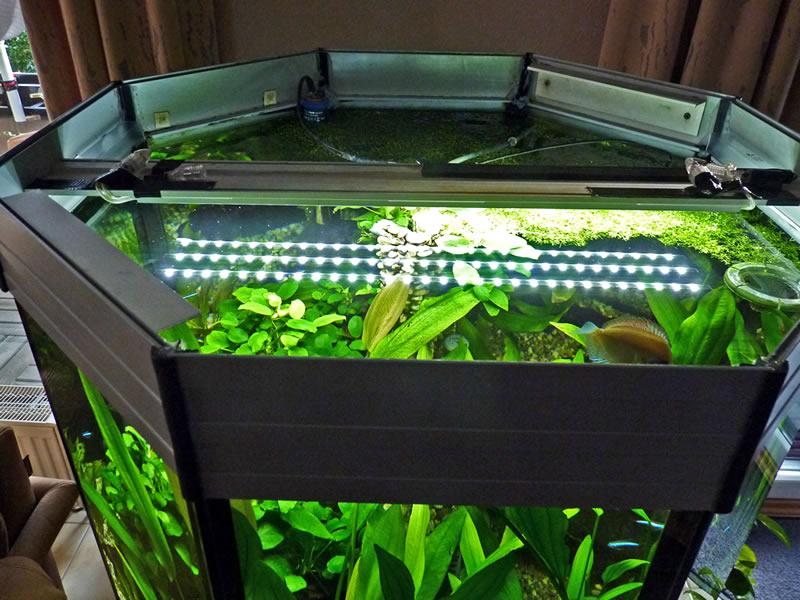led lichtleiste aquarium beleuchtung led lichtleisten. Black Bedroom Furniture Sets. Home Design Ideas