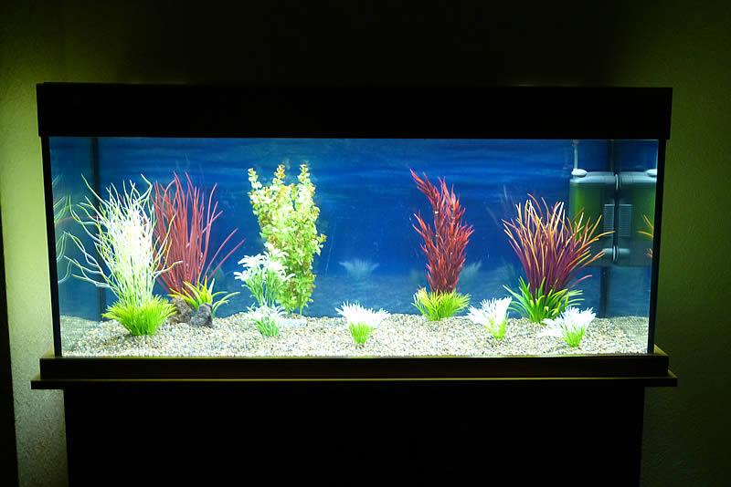 led aquariumbeleuchtung led licht leuchtbalken ersatz t5 t8 f r aquariumbeleuchtung. Black Bedroom Furniture Sets. Home Design Ideas
