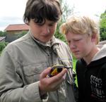 Geocaching, moderne Schatzsuche mit GPS, Geocaching im Ost-Allgäu