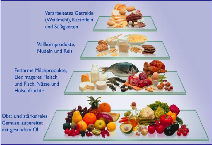 metabolic typing rezepte parasympathikus