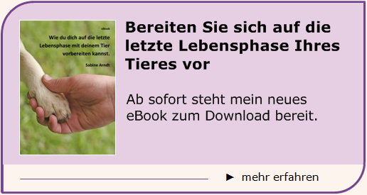Sabine Arndt - ebook