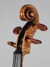 Guarneri del Gesu von Andreas Haensel